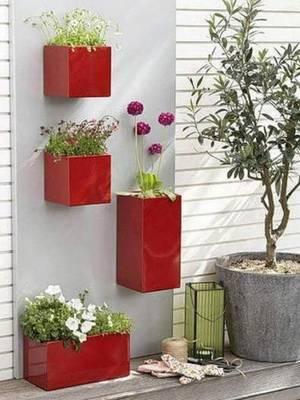 Домашние цветы в интерьере квартиры фото