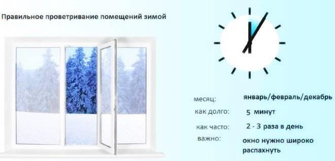 Как увлажнить воздух дома без увлажнителя