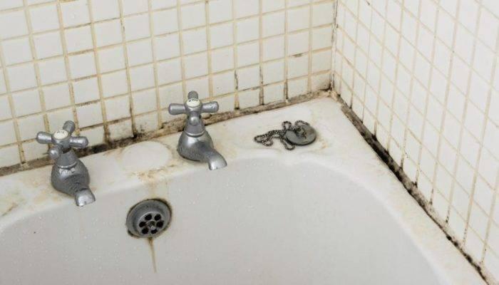 Как удалить плесень в ванной комнате